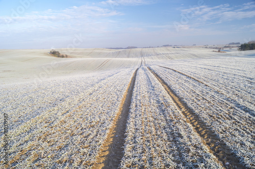Winter panorama of fields, blue sky, frosted field