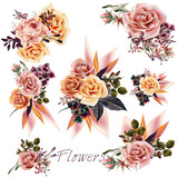 Big collection of vector roses and leafs for design - 180327546