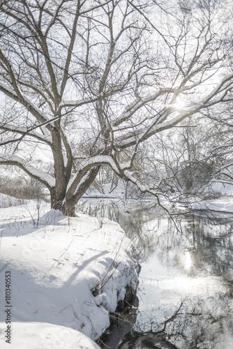 Foto op Canvas Wit bright winter landscape