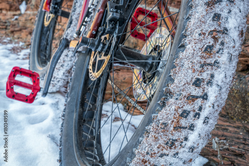 Poster fat bike on winter trail