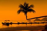 palm tropic sunset - 180351540