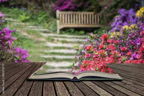 Papiers peints Cappuccino Beautiful vibrant landscape image of footpath border by Azalea flowers in Spring in England concept coming out of pages in open book