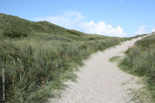 Aluminium Khaki Sonniger Tag am Sandstrand