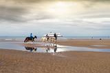 chevaux sur la plage le soir