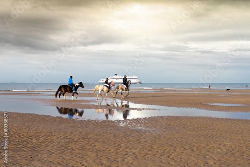 Deurstickers Cappuccino chevaux sur la plage le soir