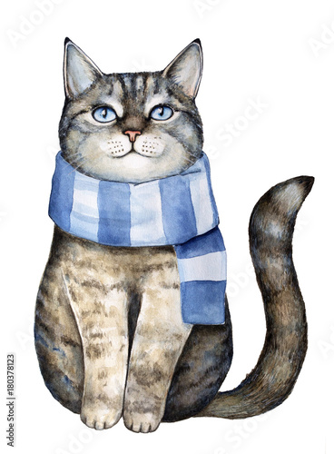 Cute gray tabby kitten dressed in blue textile striped knitted scarf, sitting and looking up, smiling with pleasure and dreaming. Hand drawn watercolour paint illustration, isolated, white background. - 180378123