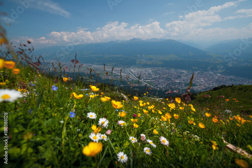 Papiers peints Bleu jean Shot of the city of Innsbruk from top of mountain at sunny day with flowers on the foreground