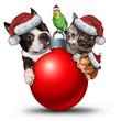 Christmas Pets Decoration