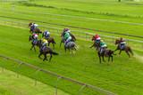 Horses Race Jockeys Overhead Running Action