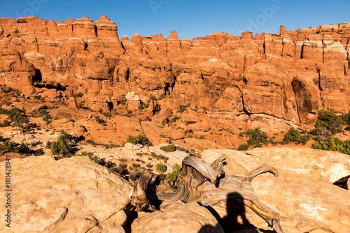 In de dag Oranje eclat Steinformationen Arches Nationalpark