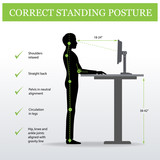 ergonomic. Correct standing posture on height adjustable desk or table sitting and standing pose of a man. Healthy sitting pose - 180441340