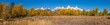 Teton Fall landscape Panoramic