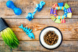 Toys for cat near dry food and grass in pot on wooden background top view