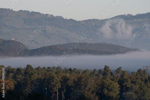 Fotobehang Grijs Landschaften im Nebel (Sommer)
