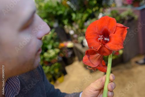 Man holding red amaryllis lily Poster