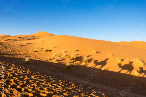 Fotobehang Marokko Stunning landscape of Erg Chebbi dunes in Sahara desert, Merzouga, Morocco