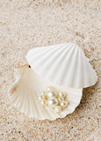 Multiple pearls in sea shell on sand - 180517902
