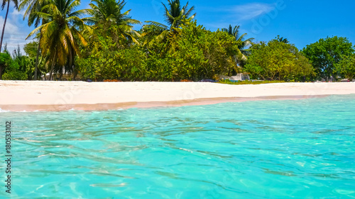 Foto op Canvas Groene koraal The tropical beach, Barbados, Caribbean