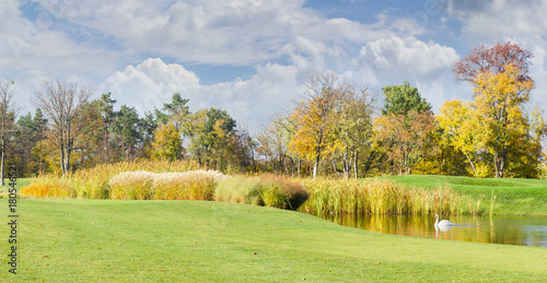 Foto op Canvas Pistache Glade with pond in the park in autumn day