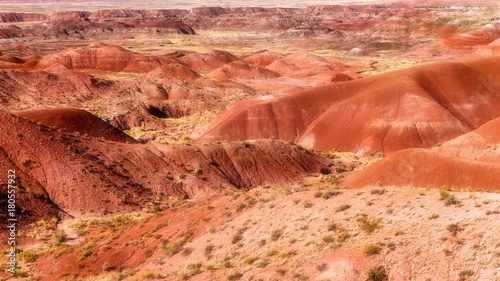 Foto op Canvas Baksteen Painted Desert Nationalpark