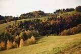 Autumn landscape, Pohorje, Slovenia - 180558367