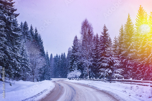 Foto op Plexiglas Purper Christmas winter landscape, spruce and pine trees covered in snow on a mountain road