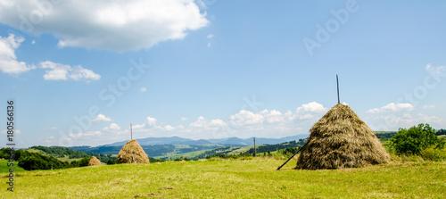 Aluminium Blauwe hemel Haystacks on a background of green beautiful Carpathian mountains