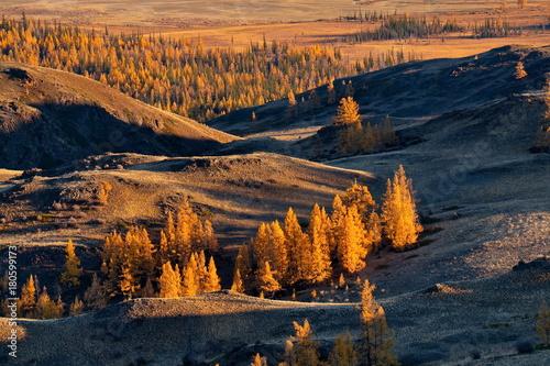 Papiers peints Noir Autumn in the Altai Mountains