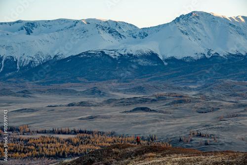 Poster Nachtblauw Autumn in the Altai Mountains
