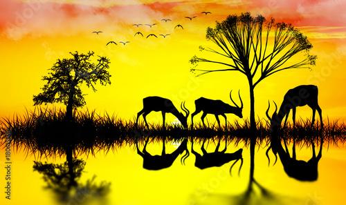 Fotobehang Geel animales en libertad comiendo junto al rio