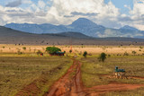 Savanna Landscape in Kenya - 180616994