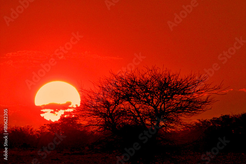 Foto op Canvas Rood Namibia