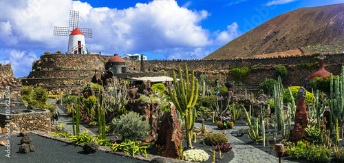 Fotobehang Freesurf Cactus garden - popular touristic attraction in Lanzarote, Canary islands