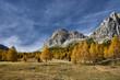 Quadro Passo Falzarego. Dolomitos , Italy