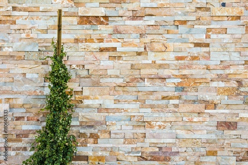 Papiers peints Brick wall colorful modern natural stone brick wall with plant texture background