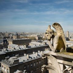 Grotesque Gargoyle Statue of Notre Dame Cathedral Paris