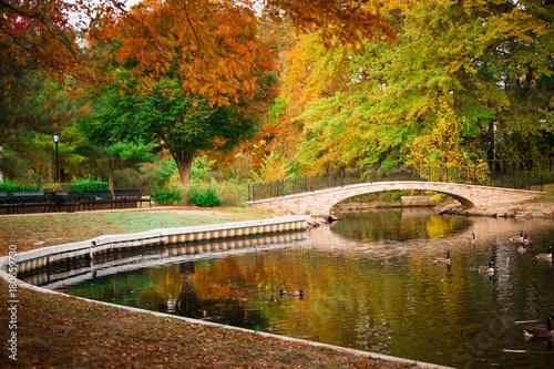 Scenic autumn duck pond with footbridge © littleny