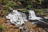 Cayuga Falls - Ricketts Glen, Pennsylvania