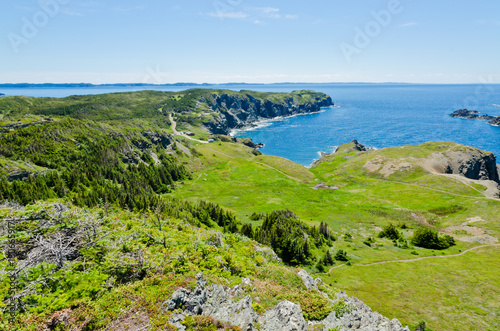 Foto op Aluminium Canada The shore of Newfoundland