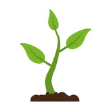 Plant growing from ground icon vector illustration graphic design - 180684528