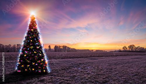 Leuchtender Weihnachtsbaum in der gefrorenen Winterlandschaft während des Sonnenuntergangs - 180686713