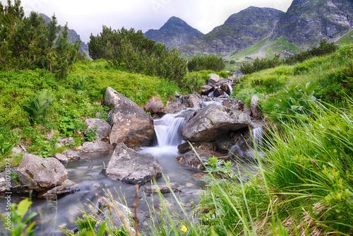 Foto op Plexiglas Lavendel creek in mountain