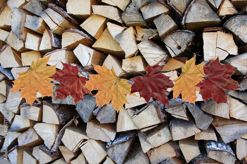 Deurstickers Brandhout textuur Chopped and stacked country village pile of birch wood. with red and yellow leaves of maple. Texture, background