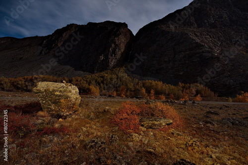 Fotobehang Chocoladebruin Moonlight night in the Altai Mountains