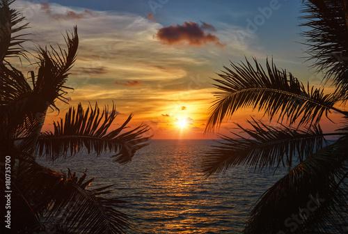 Fotobehang Strand Ocean sunset visible through palm leaves