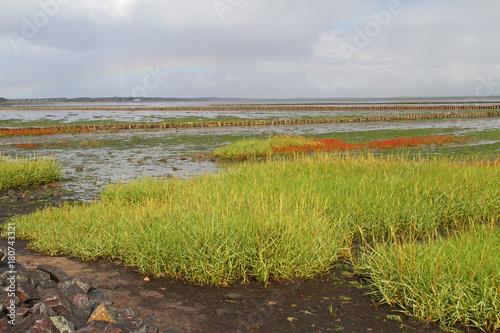 Fotobehang Noordzee Regenbogen über dem Wattenmeer vor Keitum