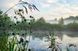 Misty Morning Panorama