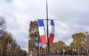 national french flags on a famous street of paris