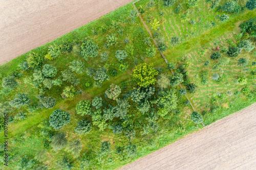 Fototapeta Luftaufnahme von Feldern im August