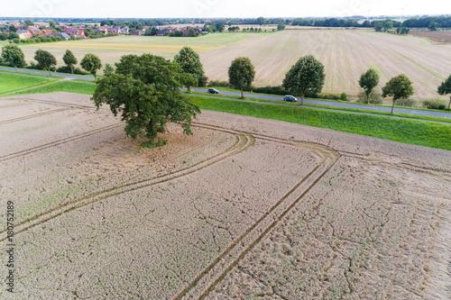 Fotobehang Donkergrijs Luftaufnahme von Feldern im August